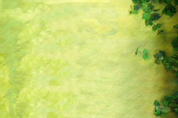 绿色的爬山虎PPT背景图片