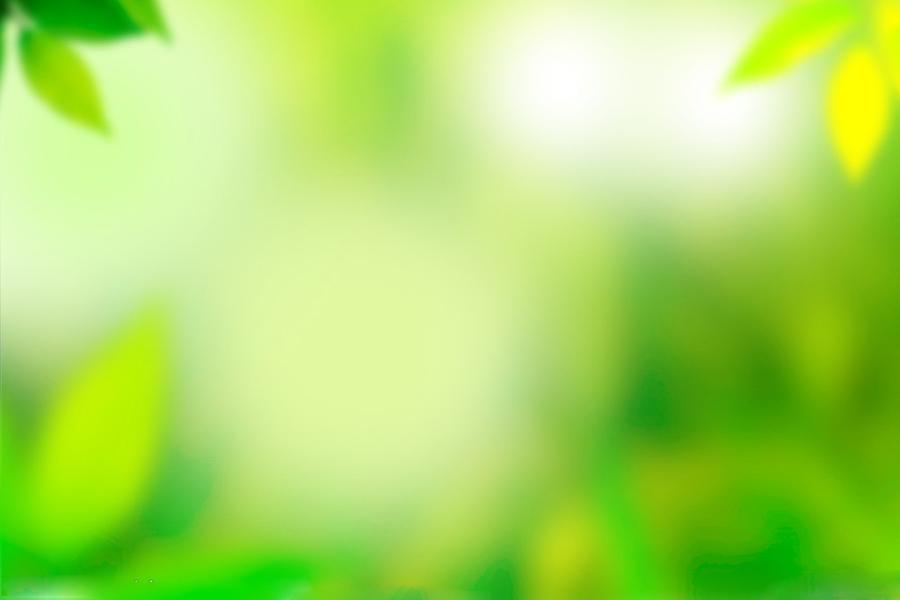 黄绿色调模糊植物PPT背景图片