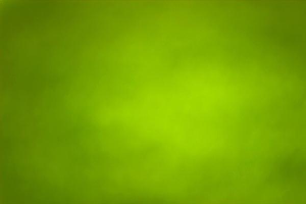 一组绿色简洁PPT背景图片