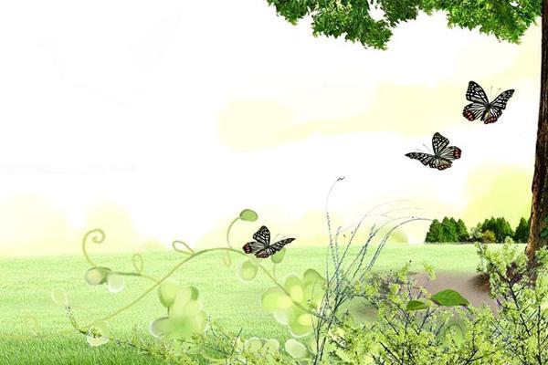 草坪大树蝴蝶花卉自然PPT背景图片