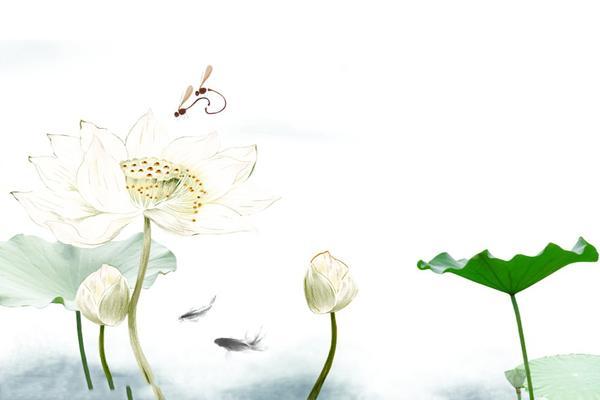 水墨荷花鲤鱼中国风PPT背景图片