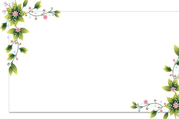 三张清新简洁的绿色藤蔓PPT背景图片