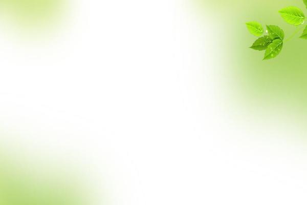 淡雅绿色树叶PowerPoint背景图片
