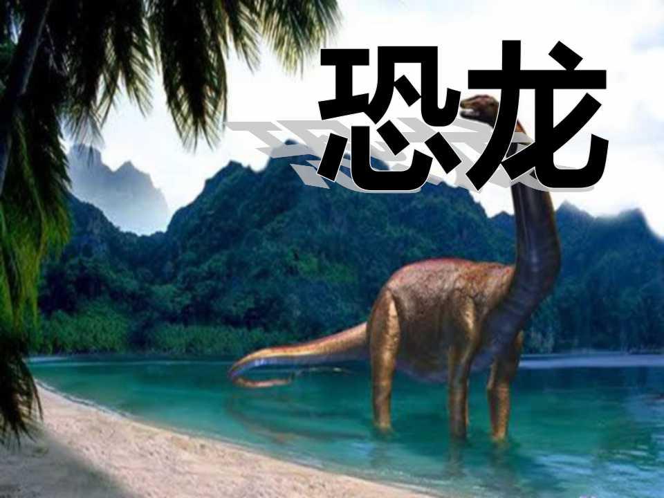 《恐龙》PPT课件5