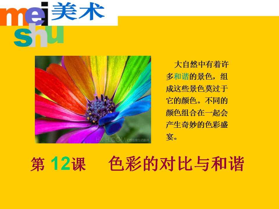 《色彩的对比与和谐》PPT课件2
