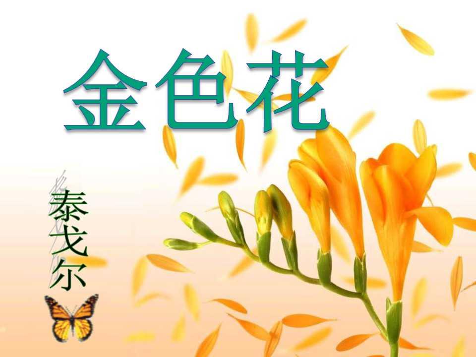 《诗两首-金色花》PPT课件5