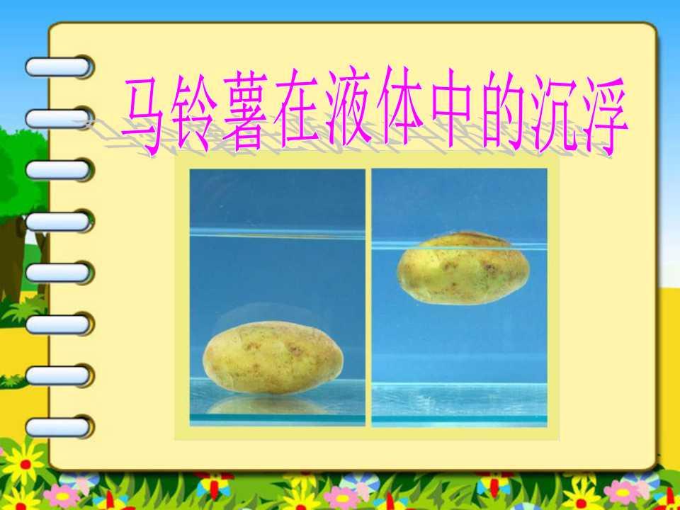 《马铃薯在液体中的沉浮》沉和浮PPT课件
