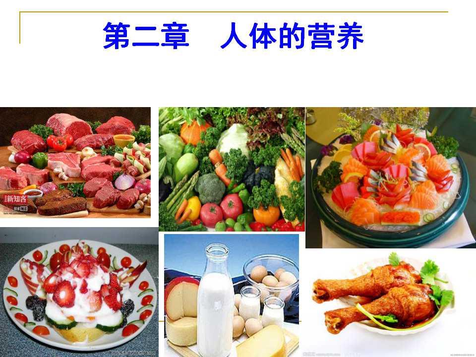 《食物中的营养物质》人体的营养PPT课件6