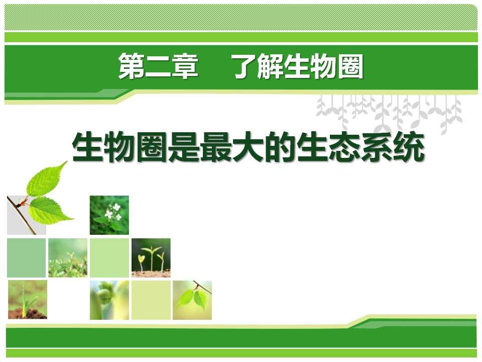 《生物圈是最大的生态系统》了解生物圈PPT课件5
