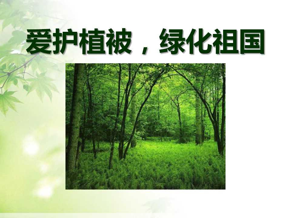 《爱护植被,绿化祖国》PPT课件5