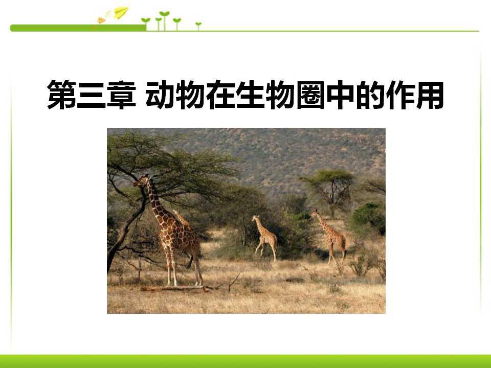 《动物在生物圈中的作用》PPT课件7
