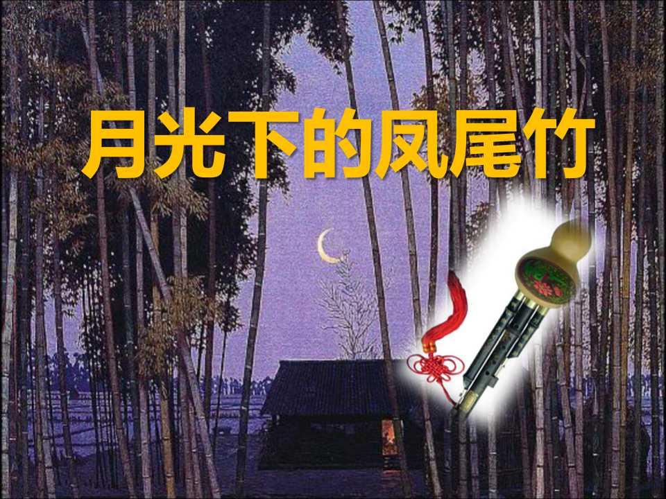 《月光下的风尾竹》PPT课件