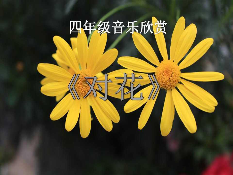 《对花》PPT课件3