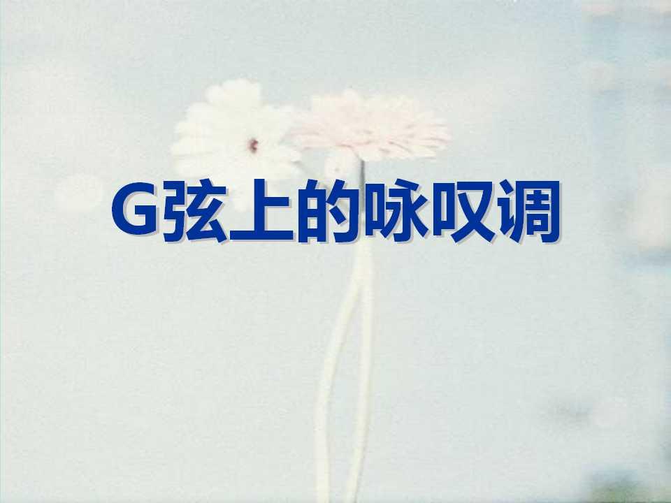 《G弦上的咏叹调》PPT课件3