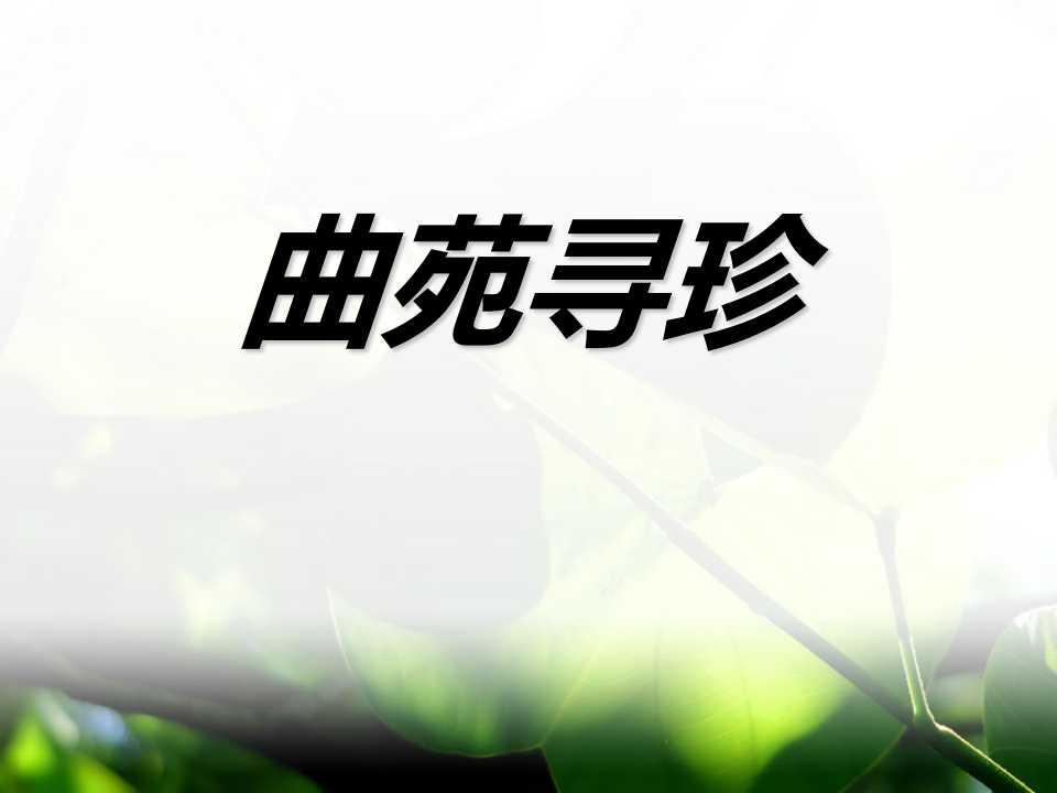 《曲苑寻珍》PPT课件2