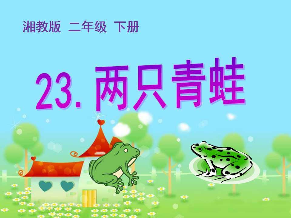 《两只青蛙》PPT课件