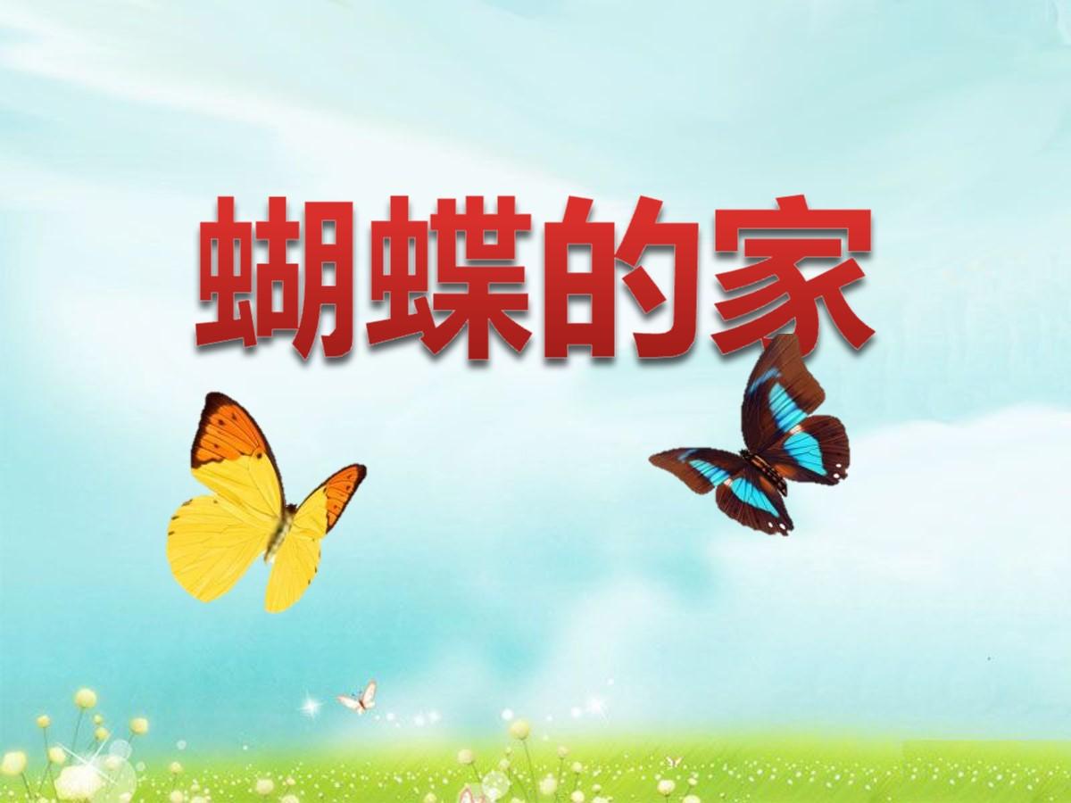 《蝴蝶的家》PPT课件2