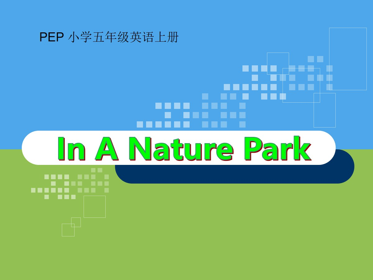 《In a nature park》PPT课件7