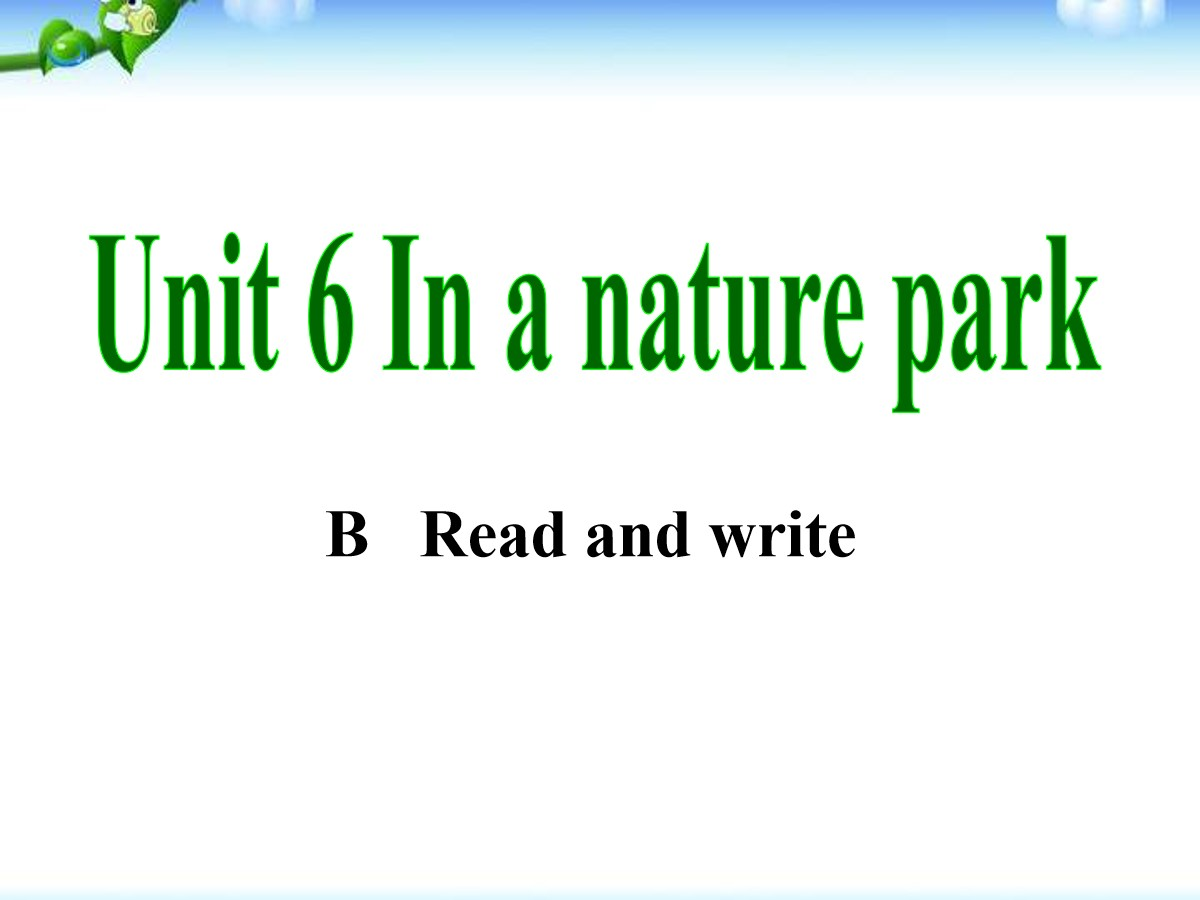 《In a nature park》PPT课件11
