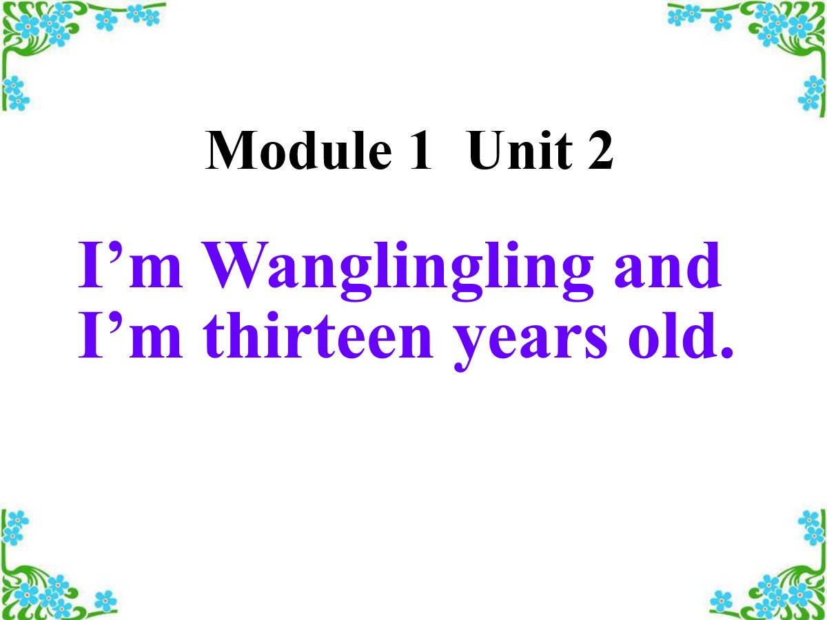 《I'm Wang Lingling and I'm thirteen years old》PPT课件4