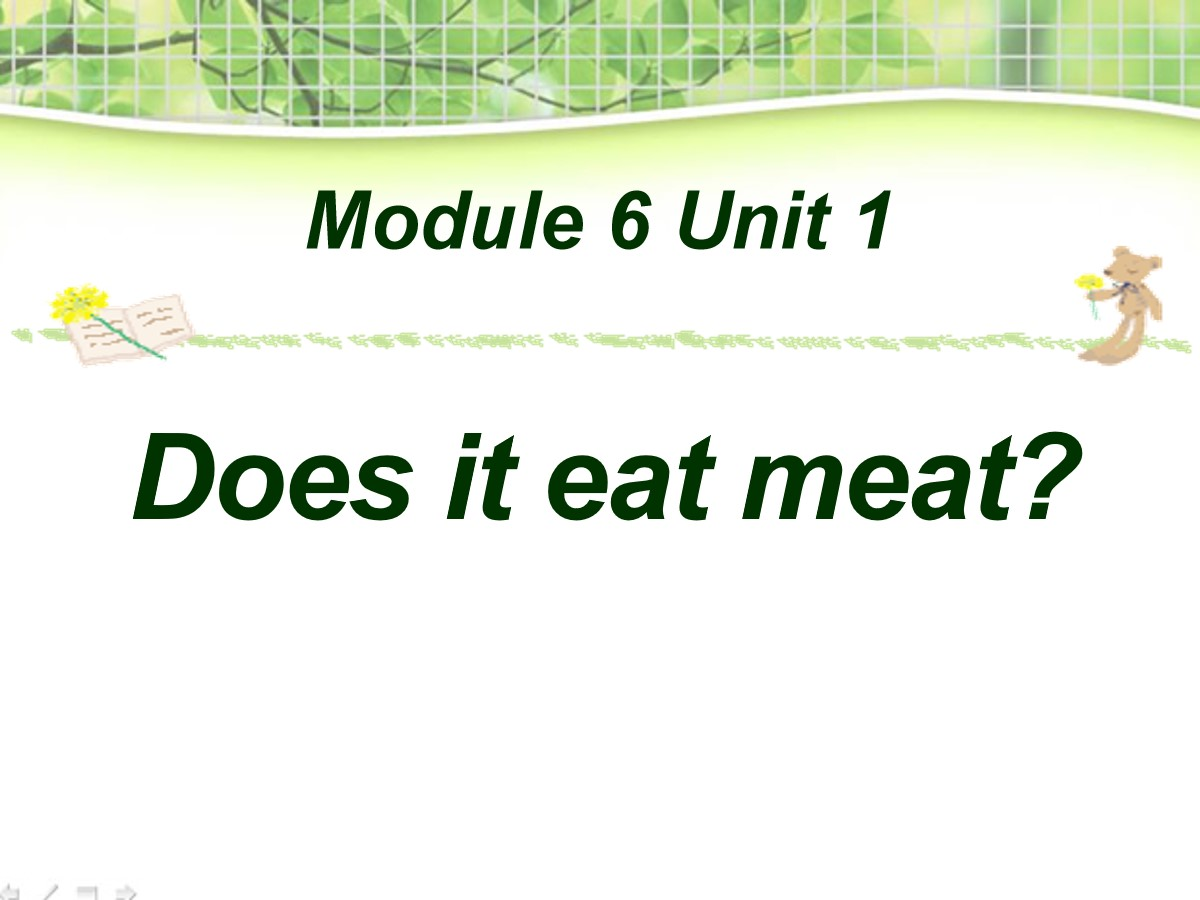 《Does it eat meat?》PPT课件3