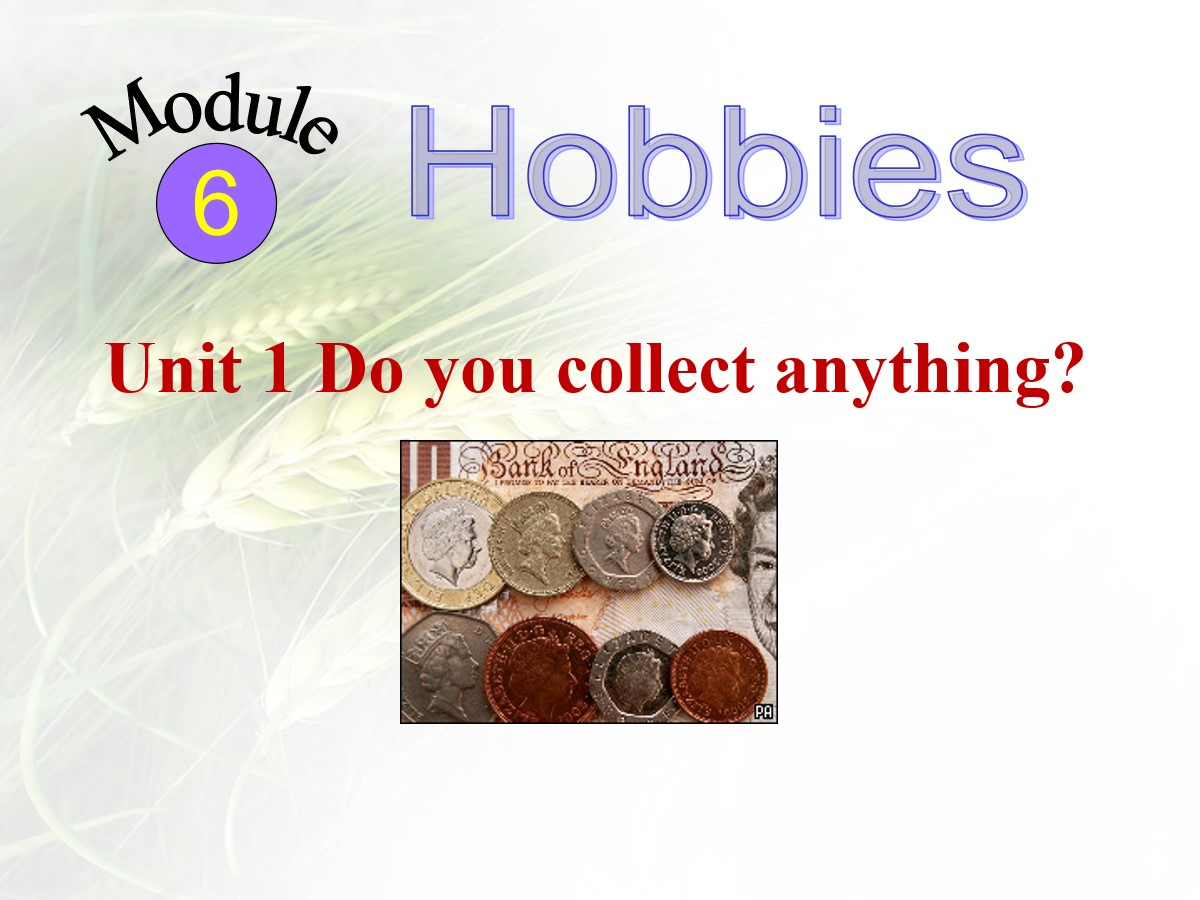 《Do you collect anything?》Hobbies PPT课件2