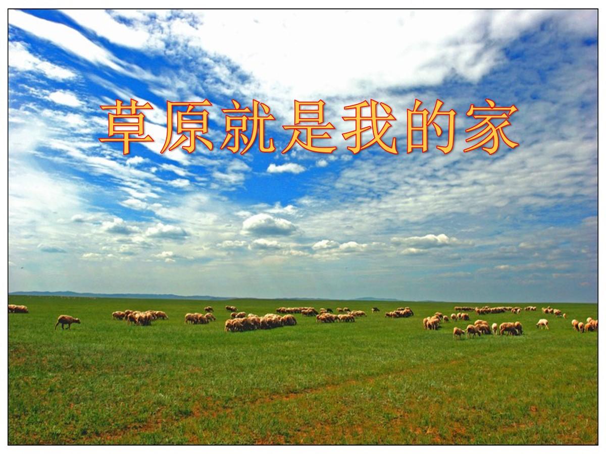 《草原就是我的家》PPT课件5