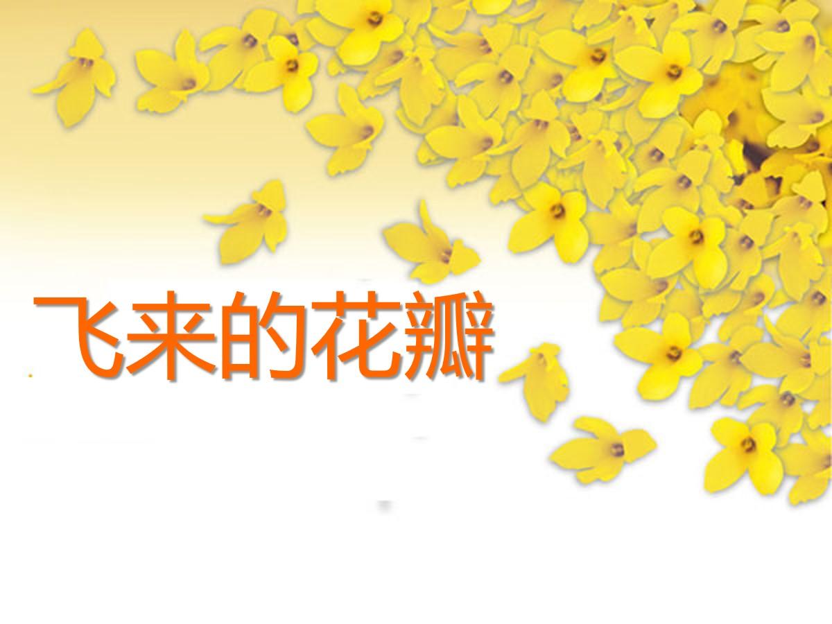 《飞来的花瓣》PPT课件3