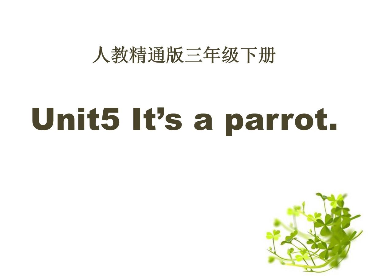 《It's a parrot》PPT课件