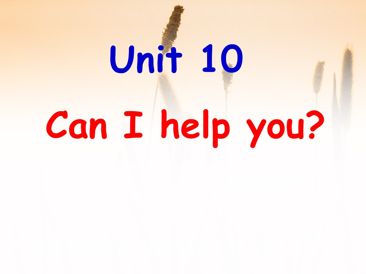 《Can I help you?》PPT