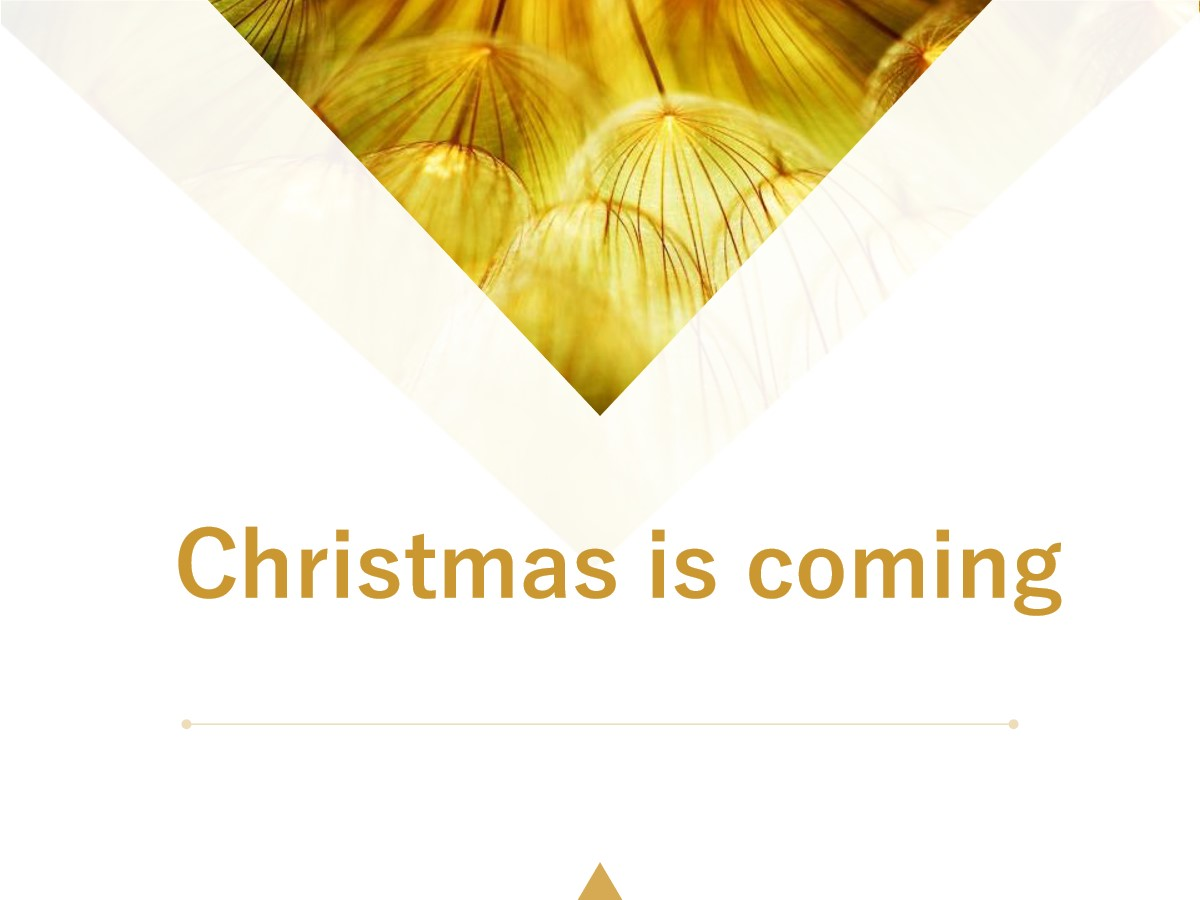 《Christmas is coming》PPT课件