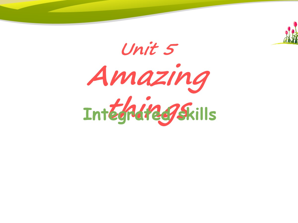 《Amazing things》Integrated skillsPPT