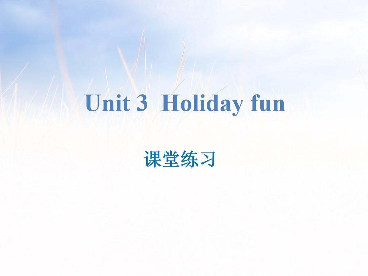 《Holiday fun》课堂练习PPT