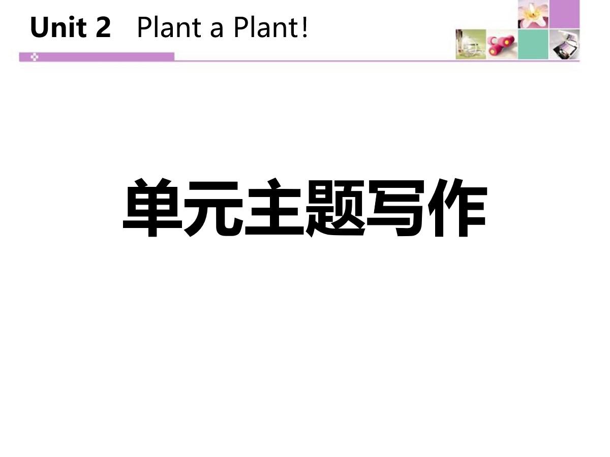 《单元主题写作》Plant a Plant PPT
