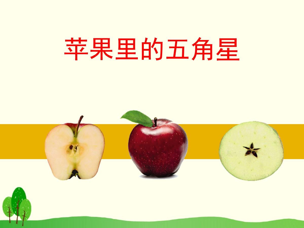 《苹果里的五角星》PPT