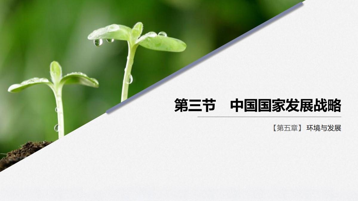 《中国国家发展战略》环境与发展PPT