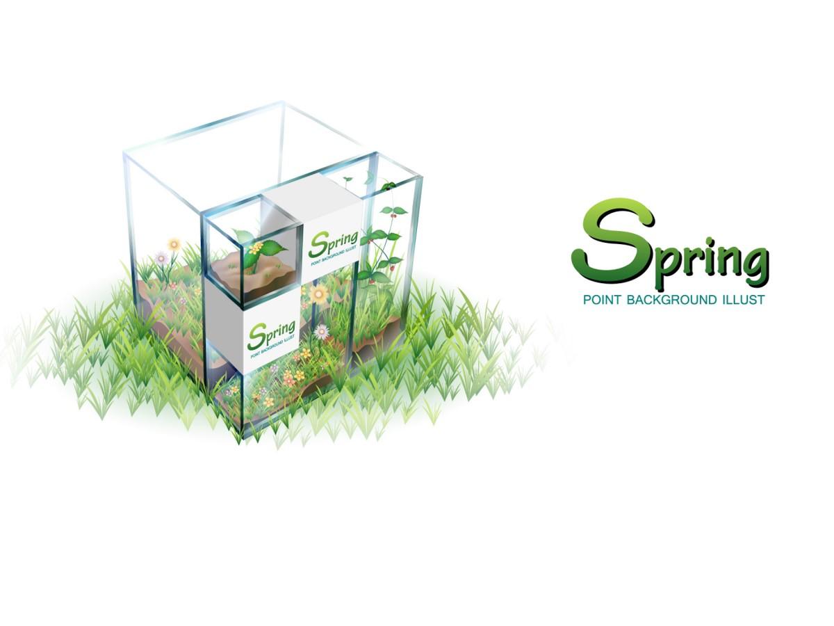 清新淡雅的春季植物PPT模板