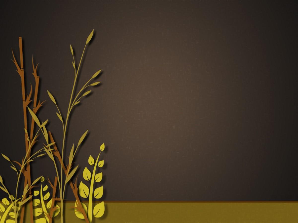 水稻小麦背景PPT模板 植物类幻灯片模板