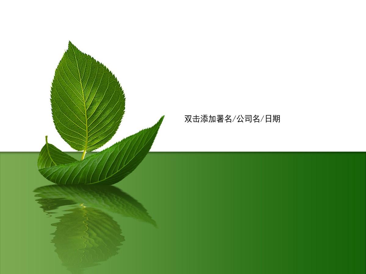 简洁树叶背景植物PPT模板