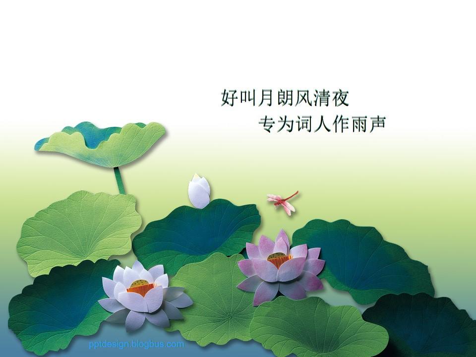 荷塘蜻蜓――中国风PPT模板