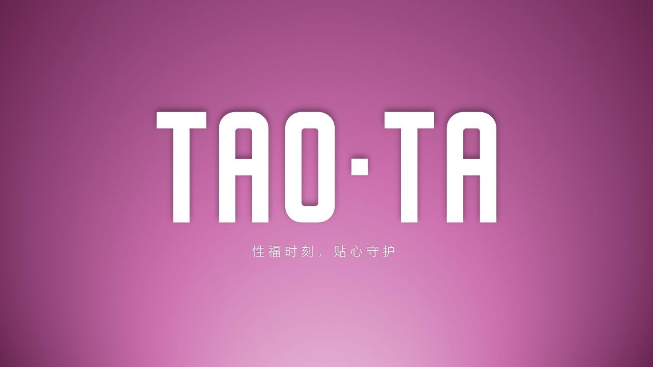 简约时尚大气风TAOTA产品发布会PPT模板