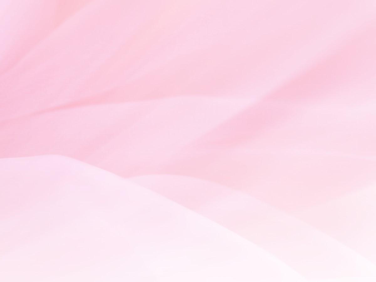 淡雅牡丹花月季花背景PowerPoint模板
