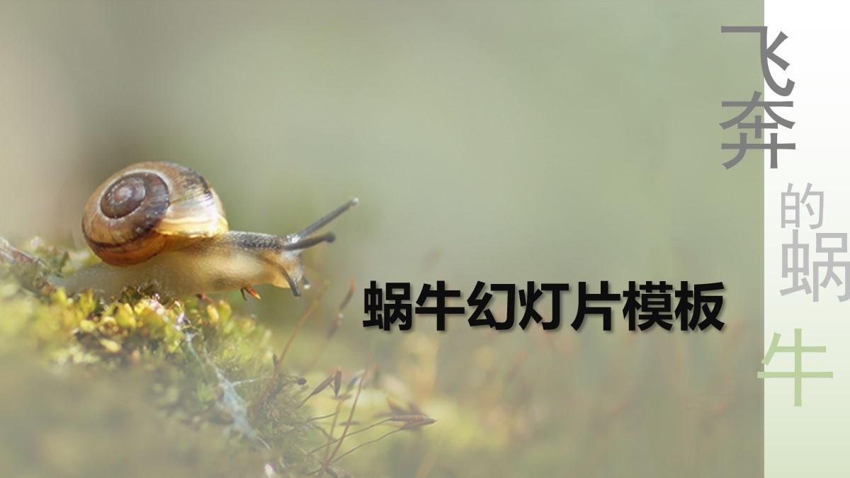 清新淡雅的蜗牛PowerPoint模板