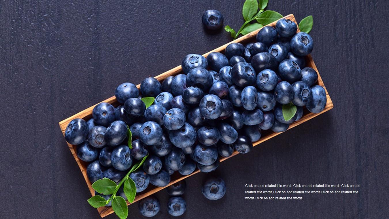 紫色水果蓝莓PPT模板