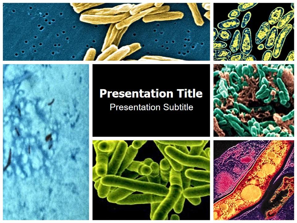 结核病菌――医疗行业PPT模板