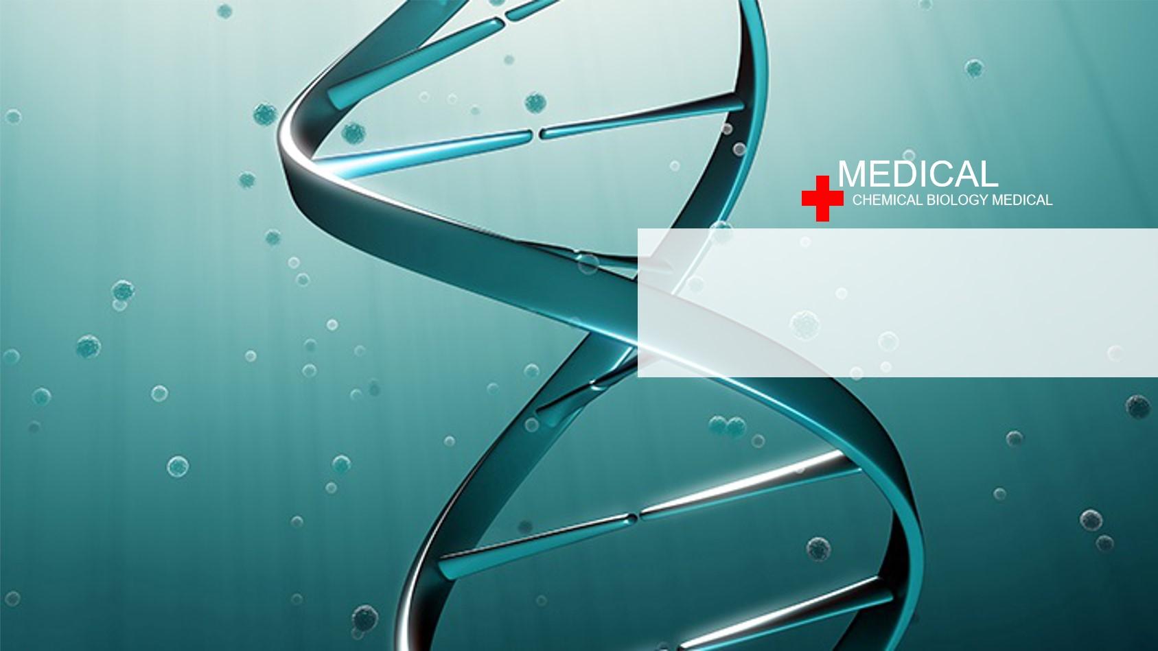 DNA链条背景的生物化学PPT模板