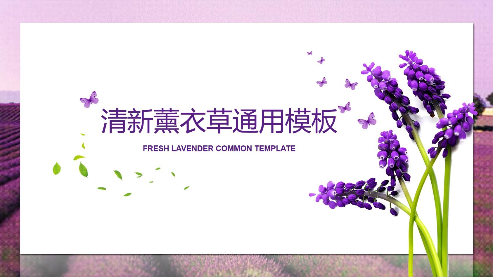 薰衣草背景的清新植物PPT模板免费下载