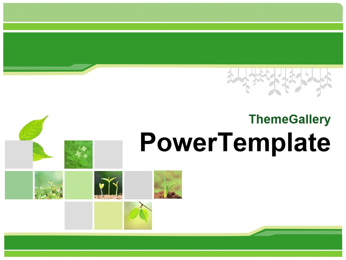 经典绿色植物背景PPT模板