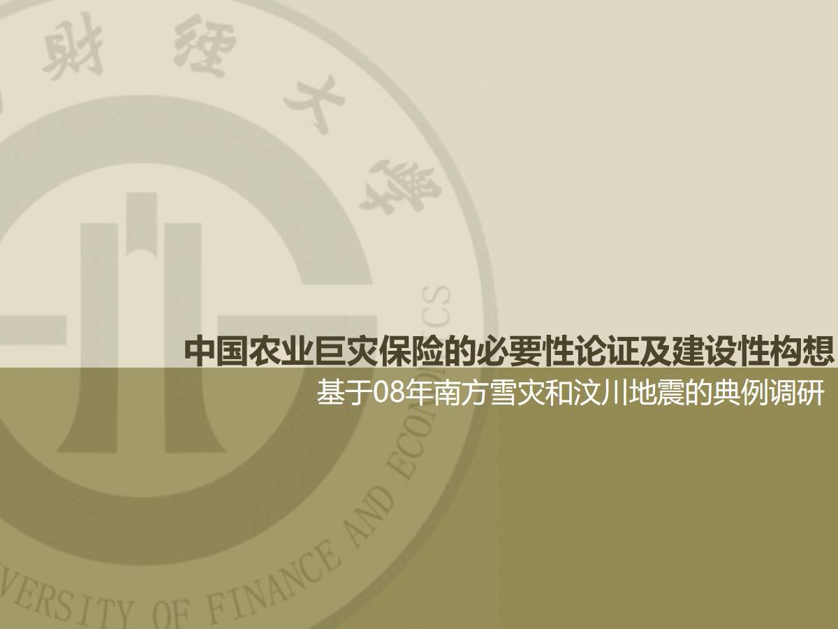 中国农业巨灾保险的必要性论证及建设性构想ppt论文模板